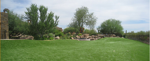 commercial maintenance services grass mowing tree trimming landscaping scottsdale arizona