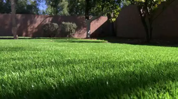 grass lawn mowing maintenance residential landscaping services east valley arizona
